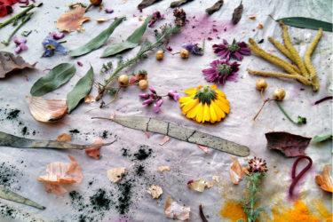 Ecoprint: Dejando huella en Can Gessé